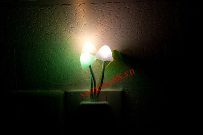 Đèn ngủ cây nấm cảm ứng ánh sáng