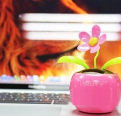 Hoa lắc lư Năng lượng mặt trời