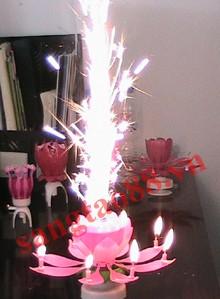 Nến sinh nhật nở hoa phát nhạc