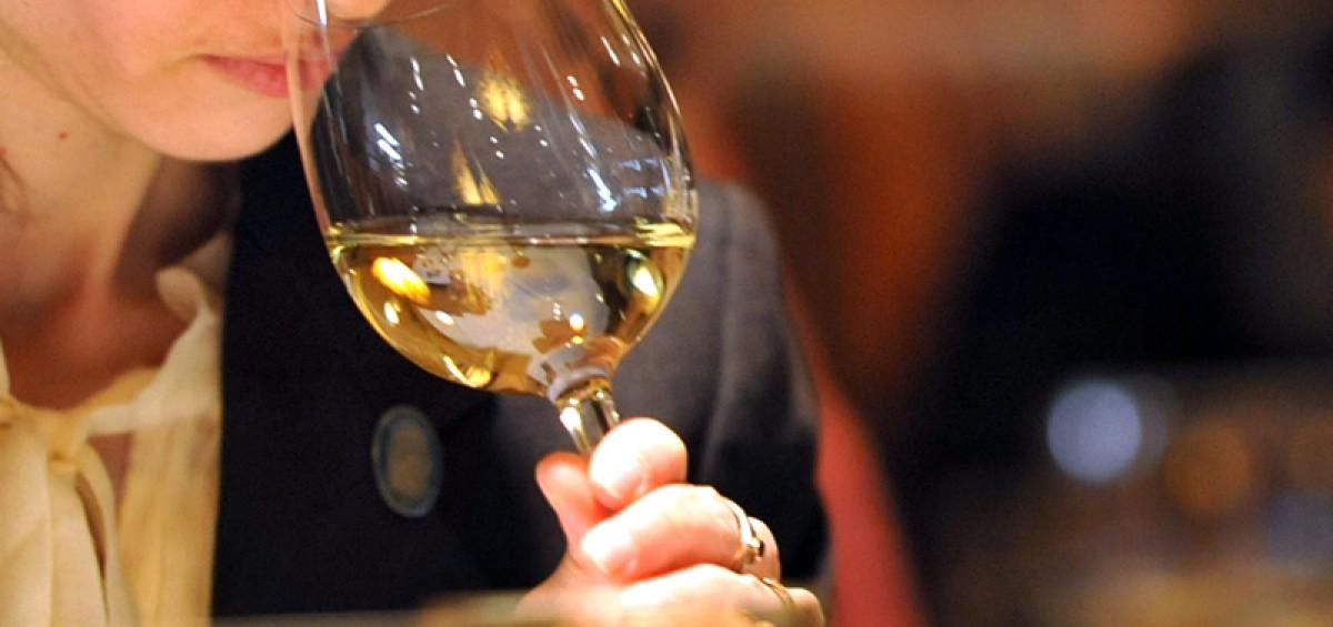 Có nên bảo quản rượu vang trong tủ lạnh không?