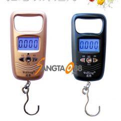 Cân móc điện tử 50kg/10g WH-A17L